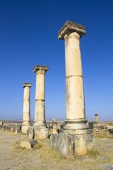 Volubilis columns