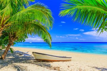 Tuinposter Eiland Dravuni Island, Fiji.