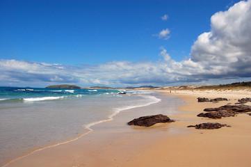 New Zealand beach with stones