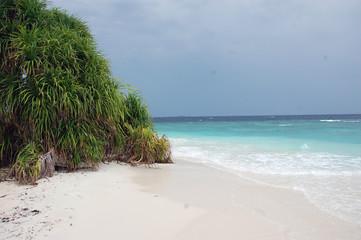 Empty white sand beach Maldives