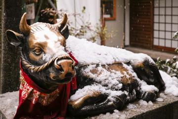 雪の錦天満宮の牛の像