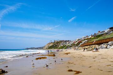 summer beach scene, California USA