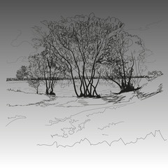 "Landscape image of trees, lake in the style of ""hand draw"""