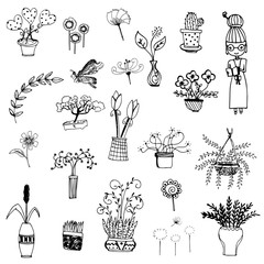 flower and plant free hand drawing vector symbol