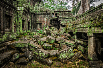 Fotomurales - Ancient ruins of Ta Prohm temple, Angkor, Cambodia