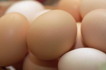 rural eggs in shell
