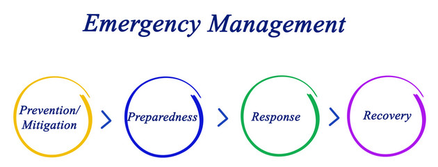 Emergency Management Cycle