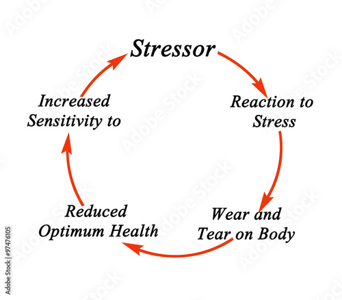 stressor stress and performance Stress-performance relationships is that there is the two types of stressors and performance is com-plicated by a second underlying mechanism spe-.