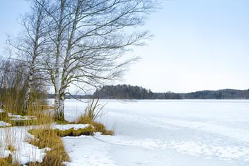 winter scenery Osterseen