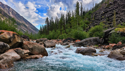 Wall Murals River Clean water of a mountain river