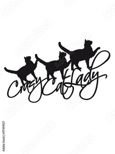 Cool Crazy Cat Lady 3 Cats Text Logo Design Crazy Funny Saying