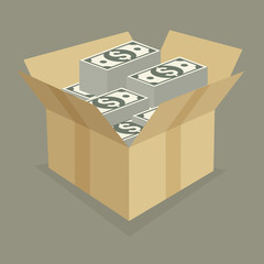 Cardboard open box with money, saving concept, vector