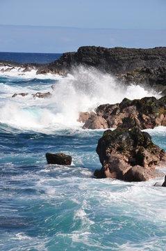 Ile de la Réunion - Marine Vincendo