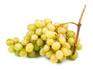 white grape on white background