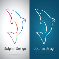 Vector image of an dolphin design on white background and blue b