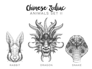 Vector set of hand drawn chinese zodiac animal.