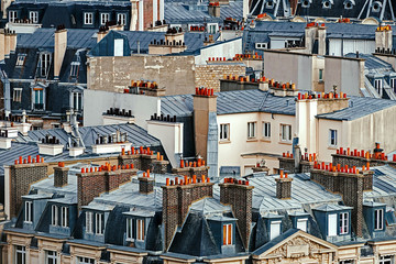 Rooftops in Paris, France. Aerial view