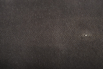 stingray leather, color for background