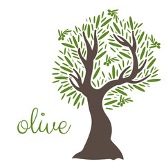 Illustration of flat olive tree. Vector