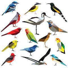 Birds-set colorful birds low poly design isolated on white background. Albatross,Bluethroat,Warbler,Cardinal,Kiskadee,Tanager,Bunting,Oahu,Avocet,Jay,Lovebird,Flycatcher,Caique,Rail,Mohua.