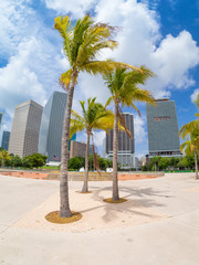 Fototapete - Bicentennial park in Miami with a view of the city skyline
