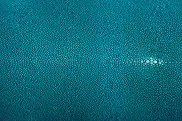 stingray leather, Turquoise color