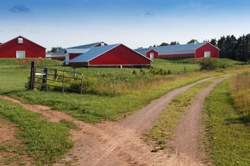 Town on field, Prince Edward Island, Canada