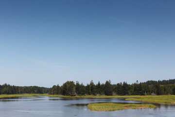 Scenic view of lake in forest against sky, Prince Edward Island, Canada