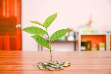 saving money and save money concept