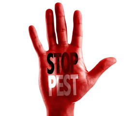 Stop Pest written on hand isolated on white background