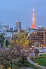 City nights scene Tokyo Tower