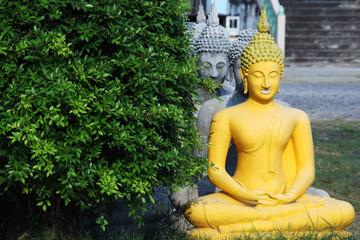 buddha image with green leaf