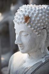 dry leaf on buddha image