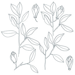 Vector branches with leafs.