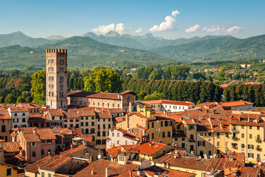 Lucca (Tuscany Italy) panorama with the Cathedral