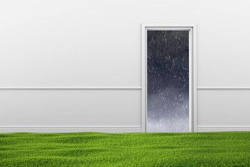 Green lawn on floor in room and the doorway with weather out door