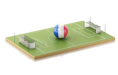 3d Soccer field and France ball.