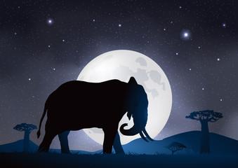 Elefant-Clair de lune