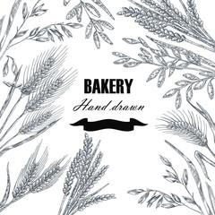 Bread design template. Hand drawn wheat set. Vector illustration