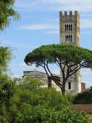 Toscana - Campanile a Lucca