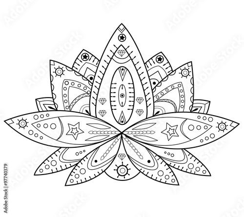 Lotus Flower Vector Isolated On White Fiore Di Loto In Bianco E