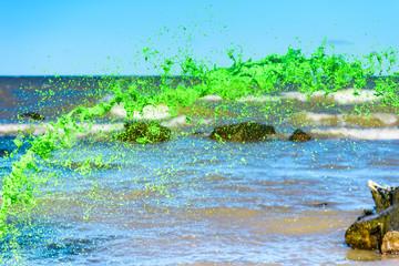 Splash of green liquid