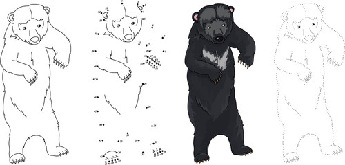 Cartoon Asiatic black bear. Vector illustration. Dot to dot game