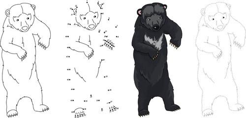 Cartoon Asiatic black bear. Vector illustration. Dot to dot game
