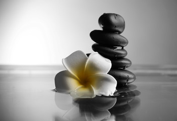 Composition of plumeria flower and pebbles pile on grey background