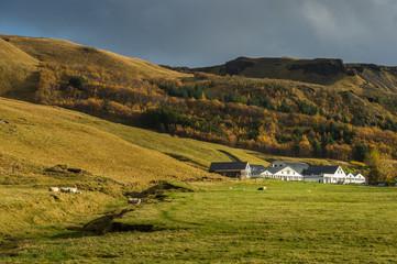 Farmhouse with field and pine tree surround mountain range background in Autumn season