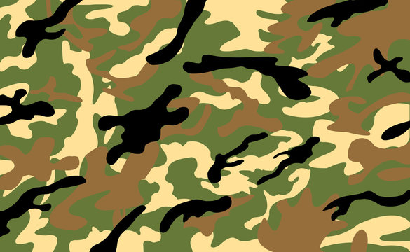 Army/Military Camouflage Pattern Background