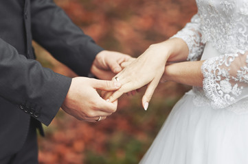 Hands of newlywed couple together.