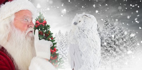 Composite image of father christmas asks for quiet