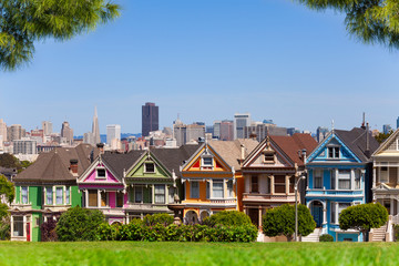 Fototapete - San Francisco skyline and painted ladies